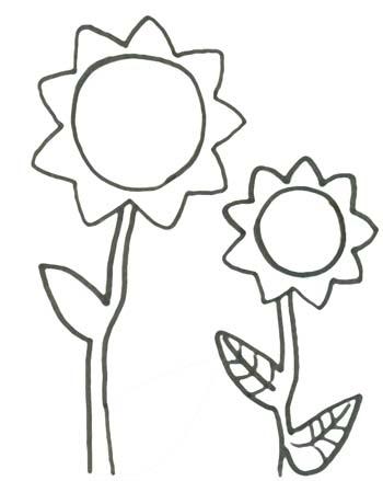 Sonnenblumen Ausmalbild Gratis Malvorlage