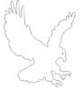 Adler Malvorlage - fliegender Adler zum Ausmalen