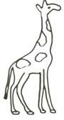 Ausmalbild Giraffe - Giraffen Malvorlage