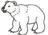 Bär Malvorlage - Bären Ausmalbild - Eisbär