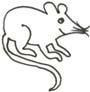 Maus Malvorlage - lustige Maus als Ausmalbild