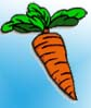 Gemüse Malvorlagen