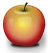 Obst Malvorlagen