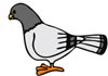 Vögel Malvorlagen